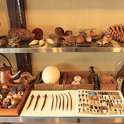 店内ディスプレイ:「博物学者の書斎」をコンセプトに作られたディスプレイ。ステンレス製のテーブルの上に、商品がところ狭しと並んでいます。