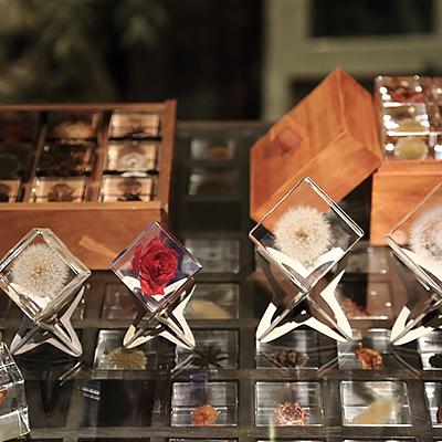 Sola cube ディスプレイ : いちばん人気のタンポポの Sola cube です。ギフトとしても大変喜んでいただいています。