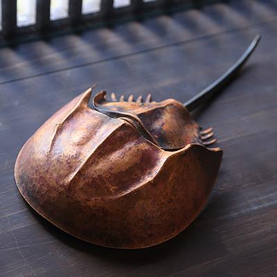 銅製のカブトガニ : 本物に見まがう精巧なつくりですが、銅作家(今尾誠さん)による作品です。自然をテーマにした、こうした作品も取り扱っています。