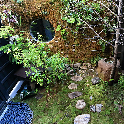 中庭 : 小さな庭で四季折々の風景を楽しんでいただけます。